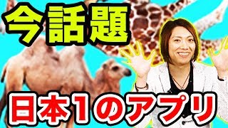 download lagu 日本1のアプリで爆笑バグwwどうぶつタワーバトルを四人でフリーダムプレイ【mssp/m.s.s Project】 gratis