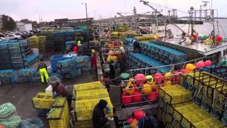 South West Nova Lobster Fishery - The Money Makers