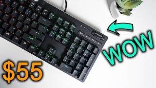 The Best Budget Mechanical Gaming Keyboard Ever!