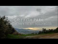 Griffith Park - Wisdom Tree to Mt. Hollywood