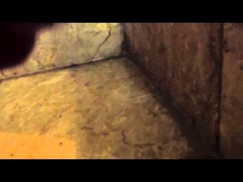 Bath Leaking In A 5 Star Hotel P2 video