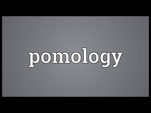 Header of pomology