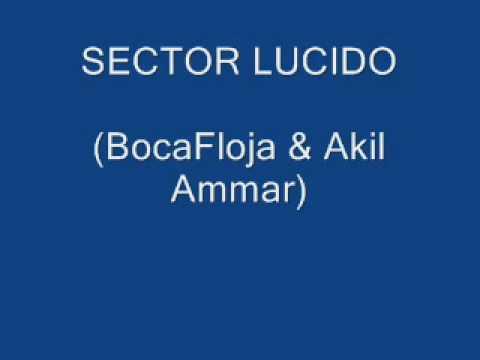 Akil Ammar & BocaFloja - sector lucido