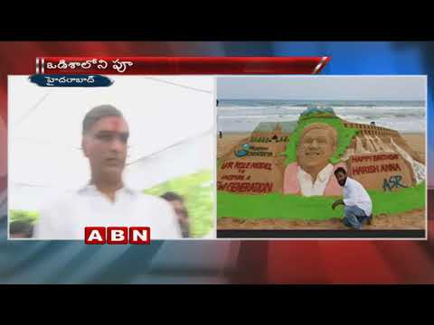TS Minister Harish Rao Birthday Celebrations In Hyderabad
