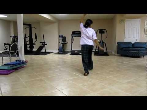 Rangeelo Maro Dholna - dance tutorial video