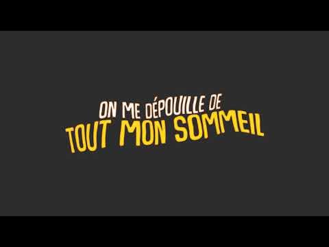 T'Musitrad | Lyrics Avicii-SOS | Paroles FR
