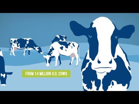 U.S. Dairy Exports: A Growth Story