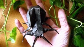 Origami  Spider  ( Modular )