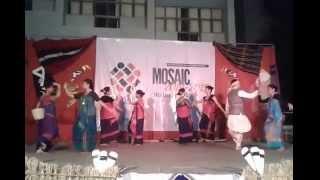 Chakma Graceful Folk Dance in TISS, Mumbai Mosiac 2015.