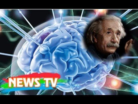 Chuyện lạ có thật về bộ não con người | bộ não