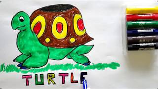 Drawing and painting a turtle