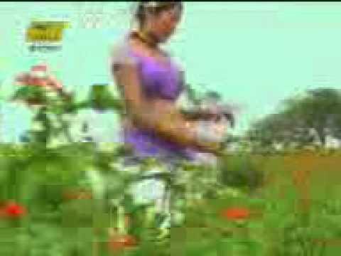 Rajasthani Lok Geet | Chudi Chamke Re Motida Palke video