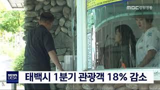 투/태백시 1분기 관광객 18% 감소