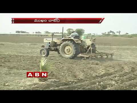 Farmers Facing Problems Due To Lack Of Rains, No water For Crops In Telugu States | ABN Telugu