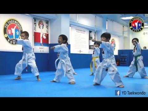 YD TAEKWONDO KOREA (Tai Koo class. May 2016)