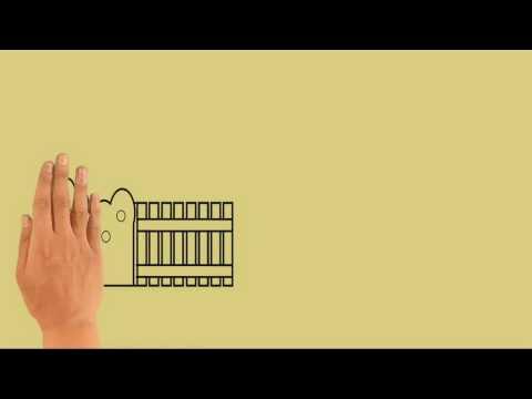 Tasha Manshahar & Syed Shamim - Selamat Ulang Tahun Cinta (Stop Motion Video)