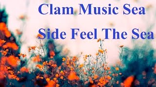 1 Hour Relaxing Music II Clam Music Sea Side Feel The Sea