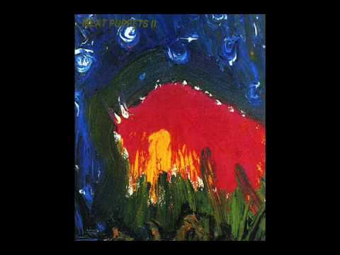 Meat Puppets - Were Here