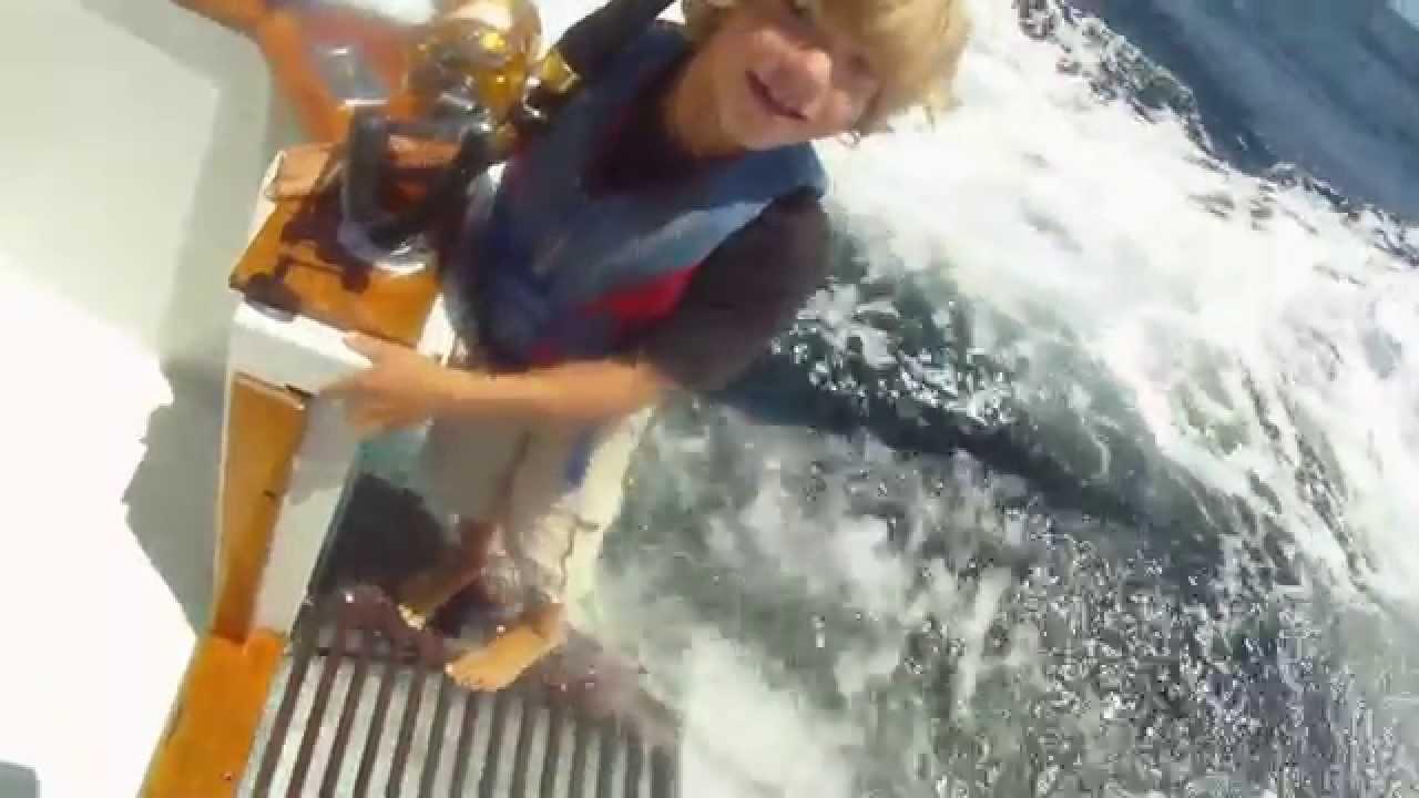 Osead fishing summer 2014 bluefin and yellowfin tuna for Catalina island fishing charters