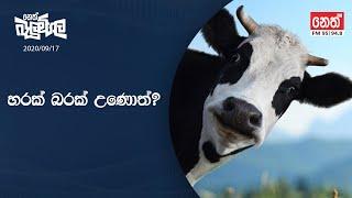 Neth Fm Balumgala | 2020-09-17