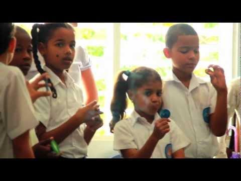 Dominica School