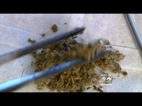 Cheap menthol cigarettes Lambert Butler Australia