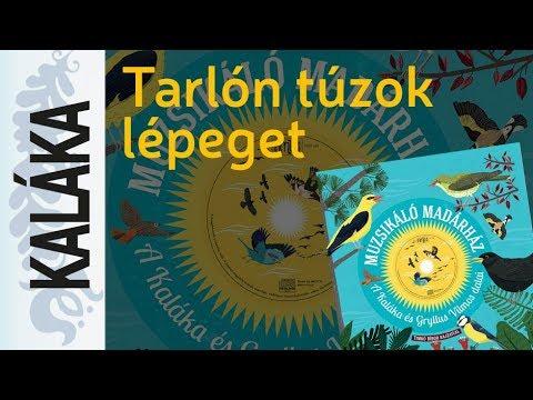 Kányádi Sándor: Tarlón túzok lépeget | Muzsikáló madárház - A Kaláka és Gryllus Vilmos dalai