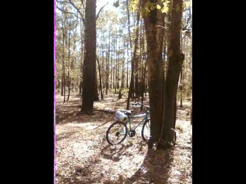 Mountain Biking O'Leno State Park 2013