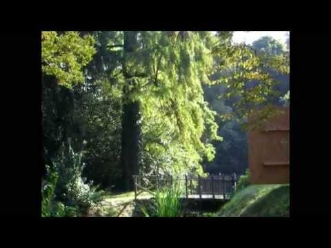 Mogliano Veneto - Parco Villa Longobardi