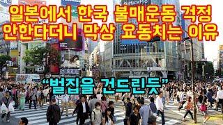 일본에서 한국 불매운동 걱정 안한다더니 막상 크게 요동치는 이유