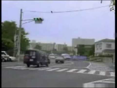 Crows using traffic to crack walnut