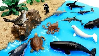 How To Make Sea World! Learn Sea Animals Names With Sand, Yogurt Cheese Slime