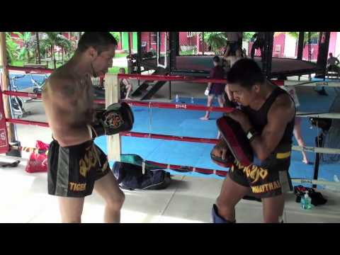 My Tiger Muay Thai Pad Training with Kru Yod, Thailand Image 1