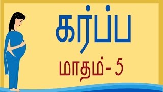 Pregnancy | Tamil | Month by Month | Month 5 | கர்ப்பம் மாதம் 5 | Week by Week - Week 16 to Week 20