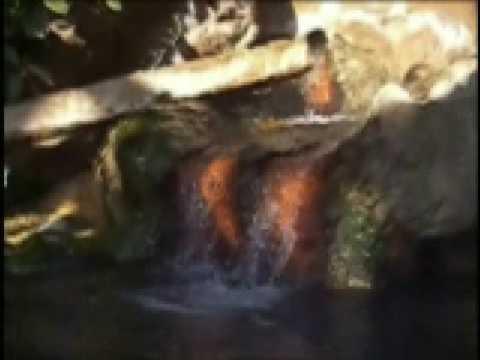 混浴温泉・福島県・小栗山温泉・民宿・文伍konyokuonsen bungo