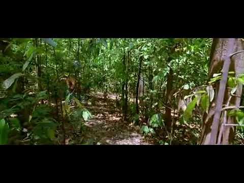 Agyaat movie part-9 thumbnail