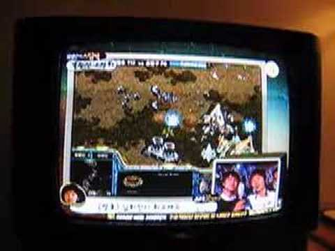 Starcraft Channel on Korean TV