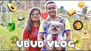 🐾 Dog-Friendly Ubud Trip || Vegan Food, Quad Bike, Bali Swing