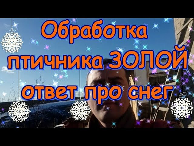 Обработка птичника ЗОЛОЙ // ответ про снег