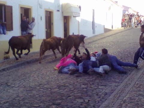 touro na rua safara 2012