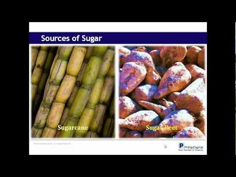 Understanding the Sugar Market