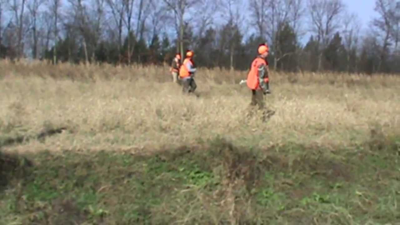 Pheasant hunting pennsylvania 2012 youtube for Pa out of state fishing license