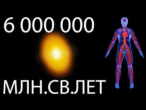 Реальные размеры Вселенной