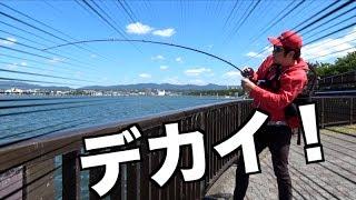 真昼間の琵琶湖で竿ぶちまがりの天才【後編】