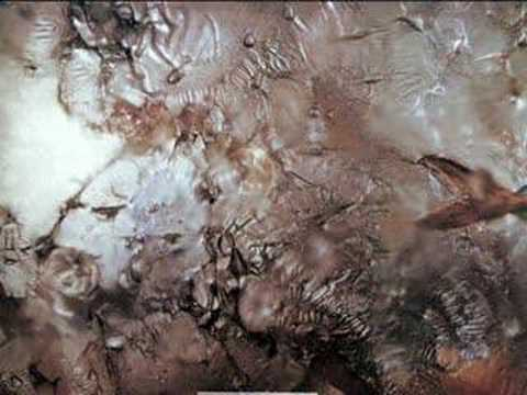 Cocteau Twins - In The Gold Dust Rush