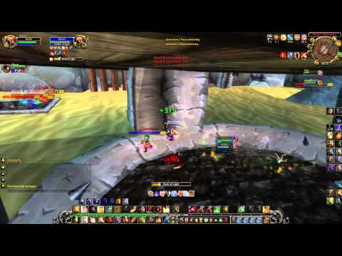 World of Warcraft - LK(3.3.5a) Dk Unholy+Paladin Holy