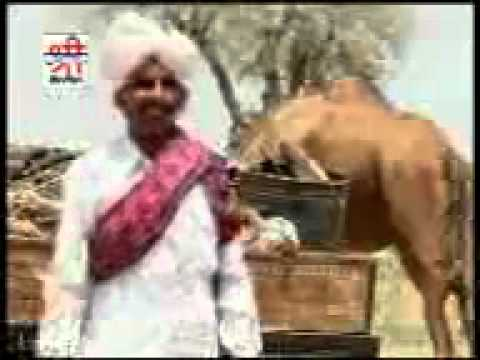 Digo Tharo Digyo  Bijal Khan Mehar video
