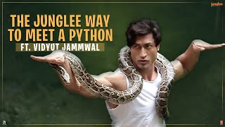 Junglee | How To Befriend A Python | Vidyut Jammwal | 29th March