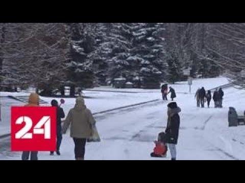 Лучше поздно, чем никогда: русская зима возвращается на Русскую равнину - Россия 24