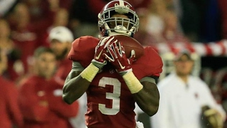 Alabama WR - Calvin Ridley Highlights 2016 (HD)